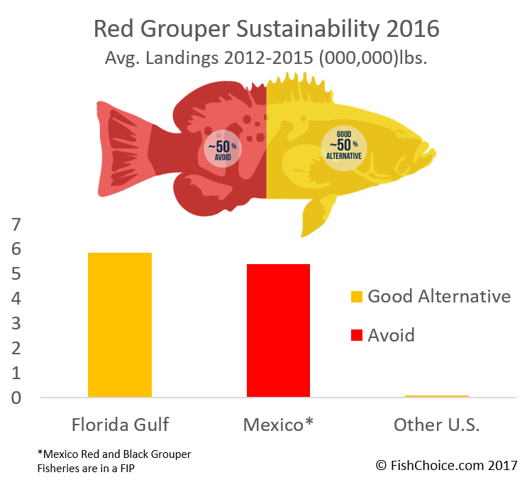Red Grouper Sustainability