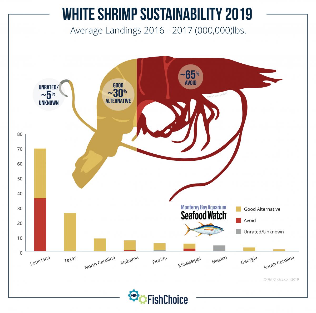 White Shrimp | FishChoice