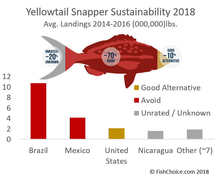 Yellowtail Snapper Sustainability