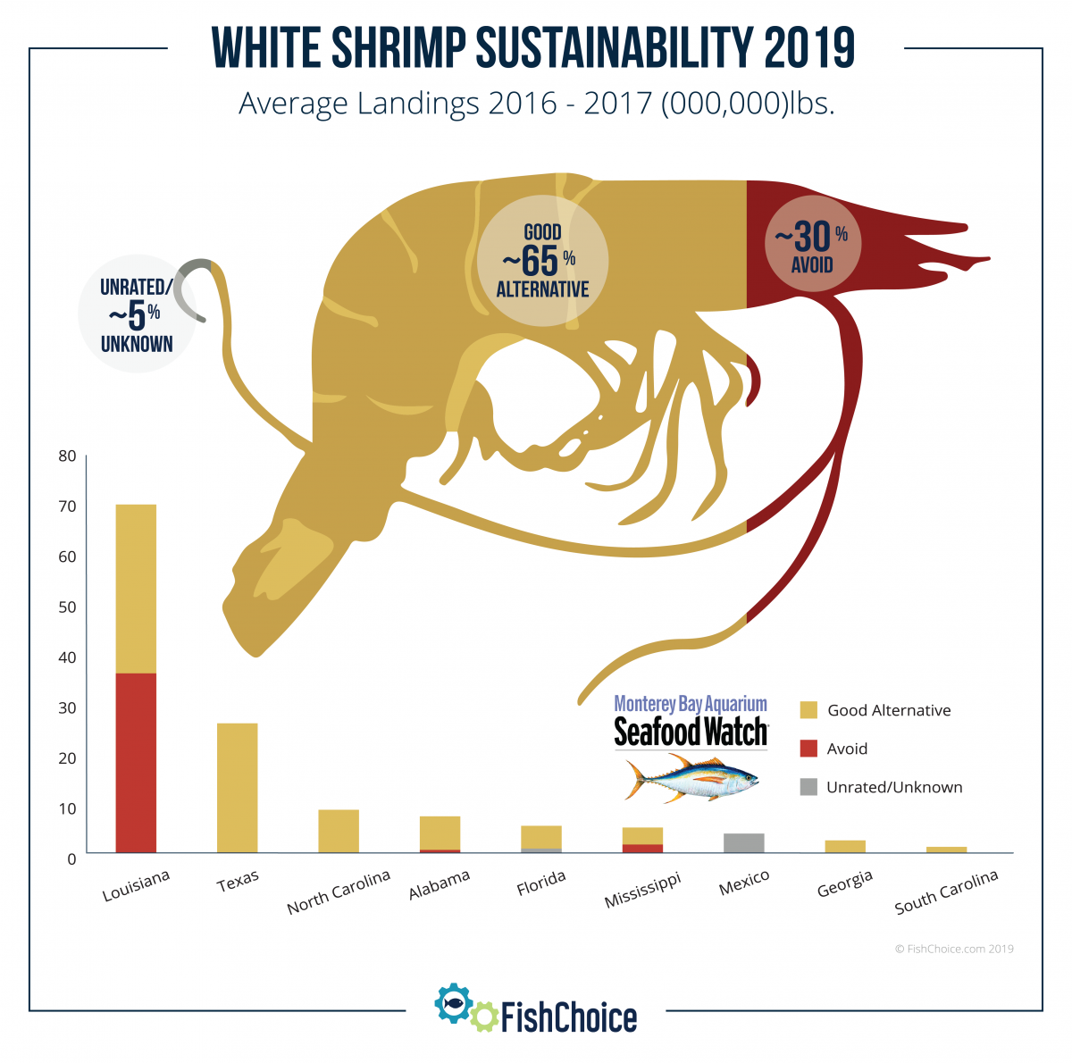White Shrimp Infographic FishChoice